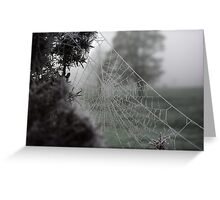 Cold Web Greeting Card