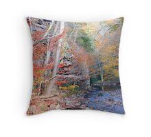 Beaverdam Creek Throw Pillow