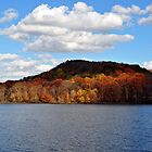 Autumn At Radnor Lake by Gretchen Dunham