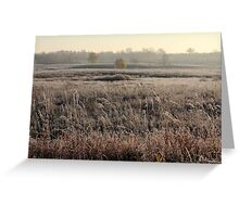 First frost in grassland at autumn time Greeting Card