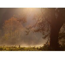Peaceful Moments Photographic Print