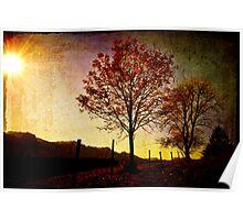 Quiet Autumn Walk ~ Austria, Europe Poster