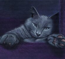 Purrrple by Carol Gorenko