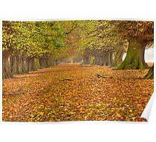 Autumns Avenue  Poster