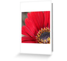 Close up of red flower Greeting Card