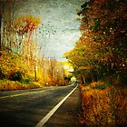 Autumn Road ~ Connecticut, USA by Sabine Jacobs