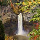 "Autumn Waterfall iPhone Case by Christine ""Xine"" Segalas"
