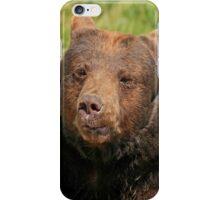Bear iPhone Case iPhone Case/Skin