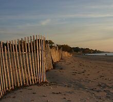 snowfence along silver beach by wolf6249107