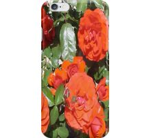 Orange Tea Roses... iPhone Case/Skin