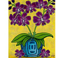 Orchid Delight Photographic Print