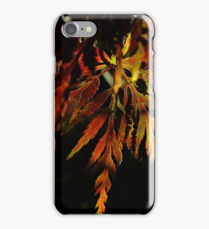 One pretty leaf in Autumn colours - iPhone iPhone Case/Skin