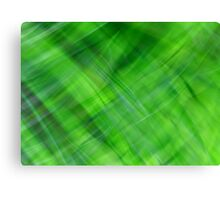 Green on Green Canvas Print