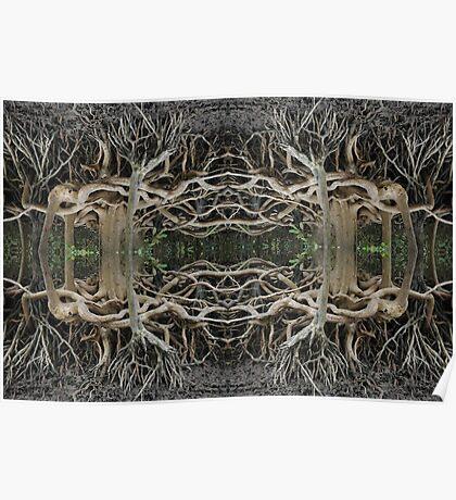 Mangrove strangeness and charm 2 Poster