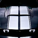 In perspective - 2011 Mustang by Mark Will