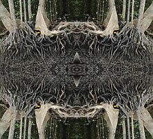 Mangrove strangeness and charm 3 by peteredbubble