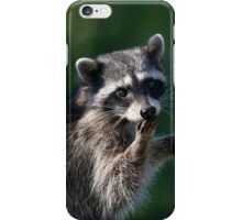 Ooops Pardon Me iPhone Case iPhone Case/Skin