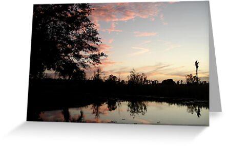 SUNSET, NOVEMBER 9, 2011 by May Lattanzio