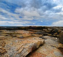 Coastline ~ Maine, USA by Sabine Jacobs