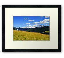 Afternoon ~ Austria Europe Framed Print