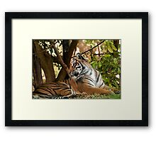 """""""What was that?"""" Framed Print"""