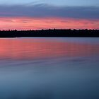 Cowell Lake by Chintsala