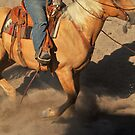 Palomino Rope Horse, Ranch Rodeo by Donna Ridgway