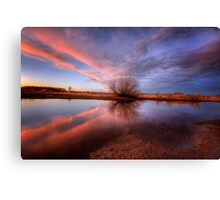 Shooting Pink Canvas Print
