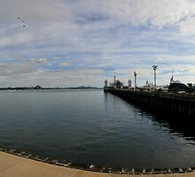 Lifesavers Cunningham Pier Panorama Geelong by Russell Charters