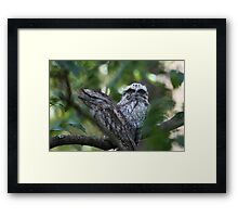 Mum, I Have To Look Framed Print