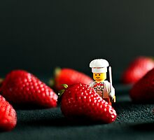 Strawberry Jungle by Raquel O'Neill