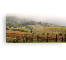 Mendocino Vineyard Canvas Print
