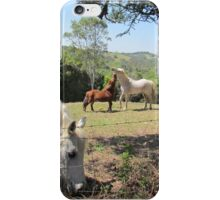 The horses next door. iPhone Case/Skin