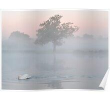 Heron Pond at Dawn Poster