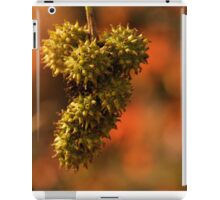 Autumn Bottle Brush iPad Case/Skin