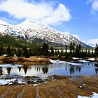 Reflections in Alaska by Laurel Talabere