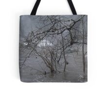 Gumballs Above the Winter Flood Tote Bag