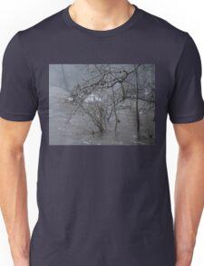 Gumballs Above the Winter Flood Unisex T-Shirt