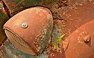 Fallen to Rust by Prasad