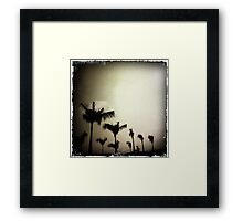 Trees and sky Framed Print
