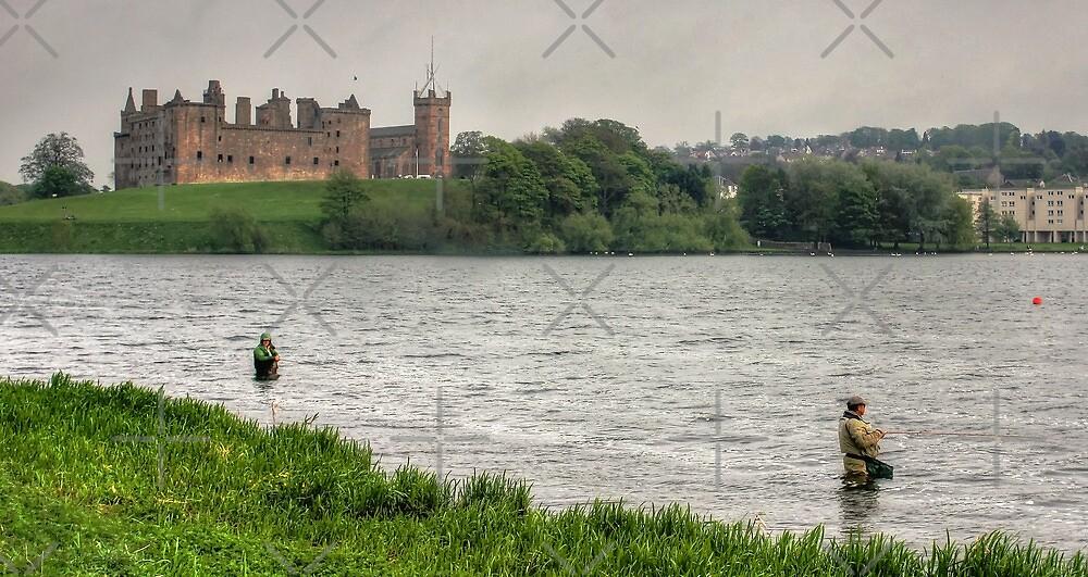 Fishing by Tom Gomez