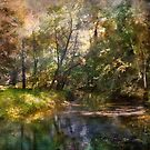 Hopkins Pond, Haddonfield, N.J. by John Rivera