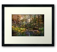 Hopkins Pond, Haddonfield, N.J. Framed Print