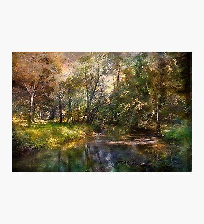 Hopkins Pond, Haddonfield, N.J. Photographic Print