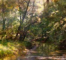 Hopkins Pond, Haddonfield, N.J. Sticker