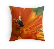 """Summer"" Throw Pillow"