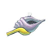 magic conch by Sara Jaye