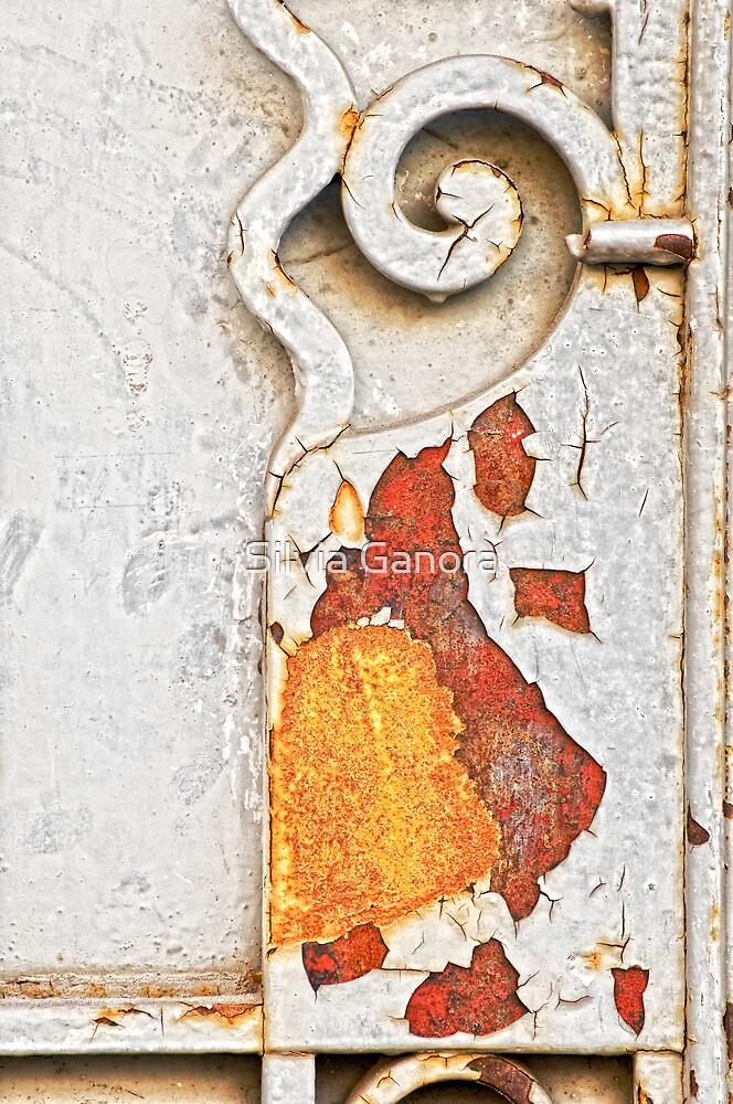 Gate detail by Silvia Ganora