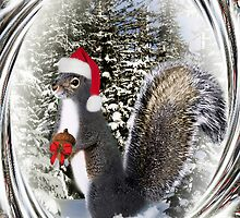 .¸¸¸.•*•♪ღ♪ MY SQUIRRELLY GIFT I GIVE TO U HAVE A NUTTY CHRISTMAS  .¸¸¸.•*•♪ღ♪ by ✿✿ Bonita ✿✿ ђєℓℓσ
