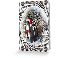 .¸¸¸.•*•♪ღ♪ MY SQUIRRELLY GIFT I GIVE TO U HAVE A NUTTY CHRISTMAS  .¸¸¸.•*•♪ღ♪ Greeting Card
